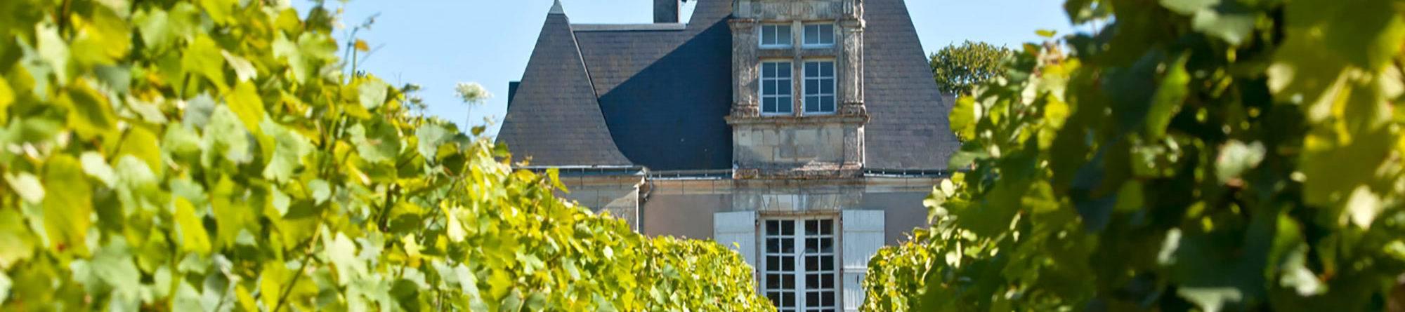 Bannière Château Montfort