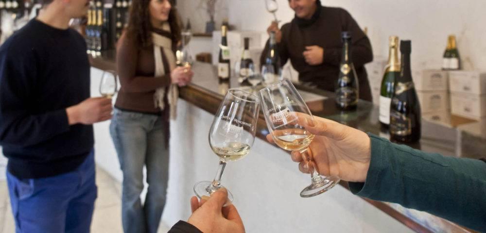 Dégustation vin Moncontour